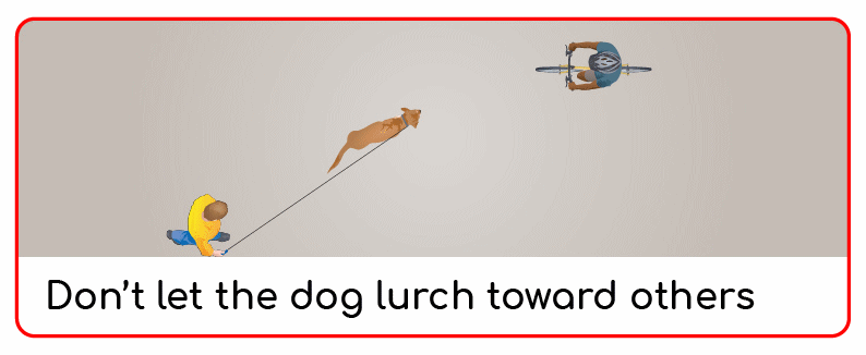 don't let the dog lurch