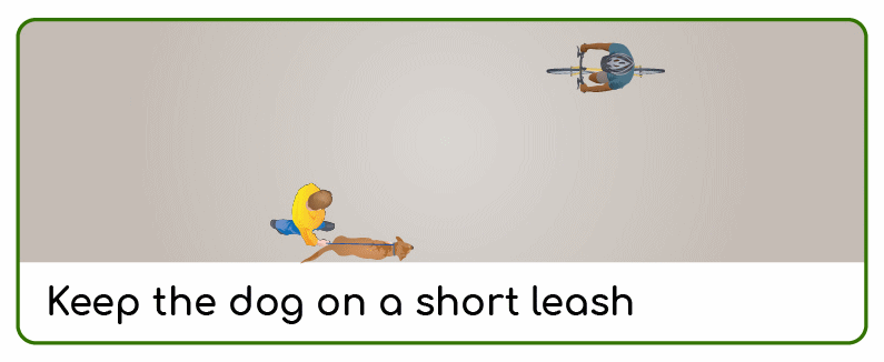 keep your dog on a short leash