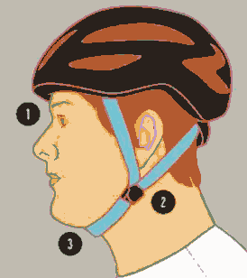 Bicycle helmet fit