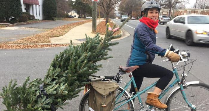 Pam brings ohome a Christmas tree